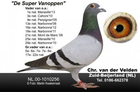 supervanoppen